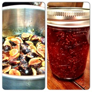 From fresh figs to fig jam...pretty delicious!