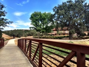 The path to Martian Ranch's tasting room.